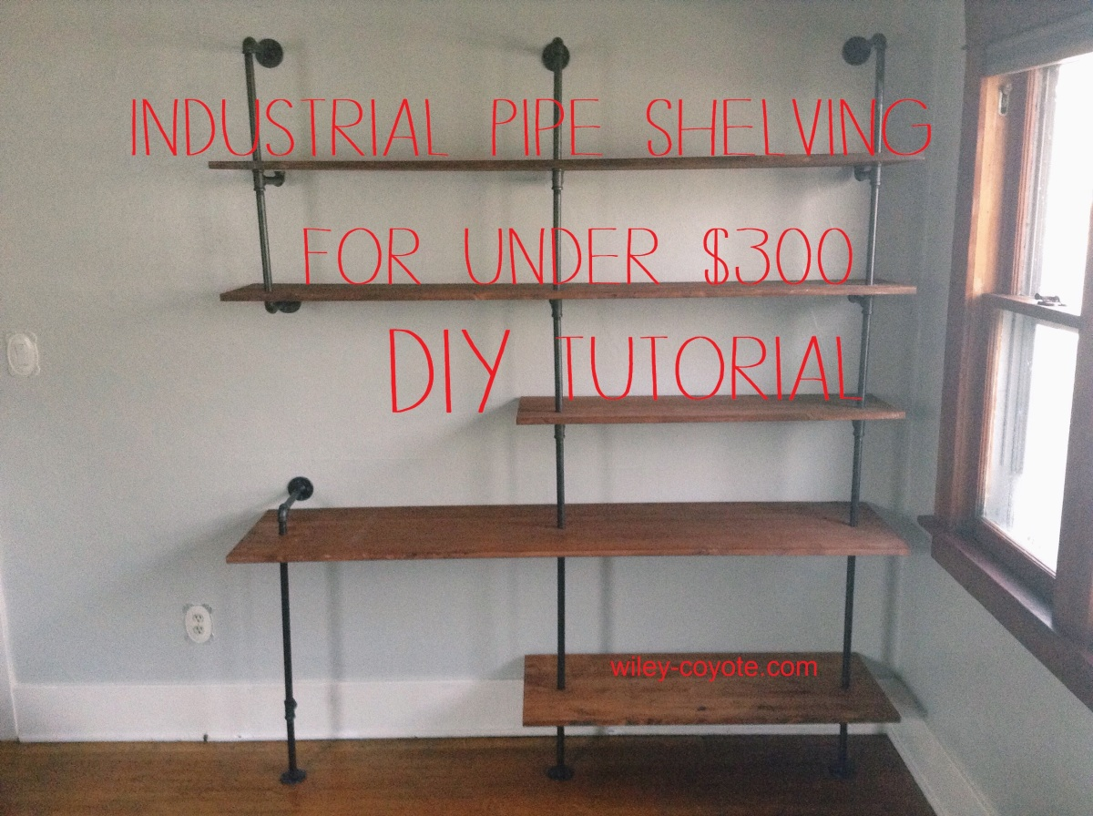 Diy industrial pipe shelving for 250 wiley coyote for Diy industrial bookshelf